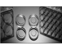 玻底(共聚焦)培养皿