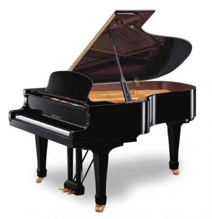 福建APOLLO钢琴销售