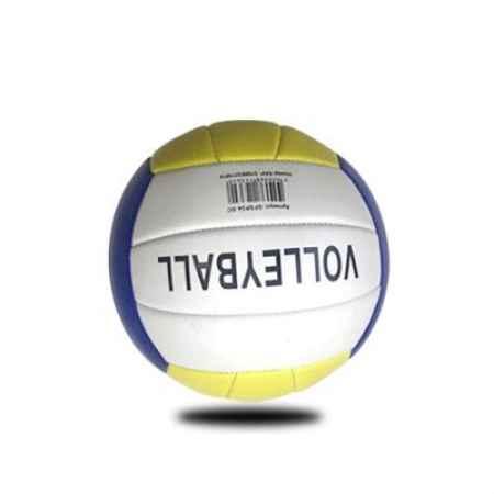成人沙滩训练排球